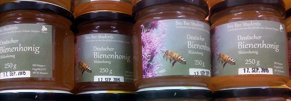 Der erste eigene Honig